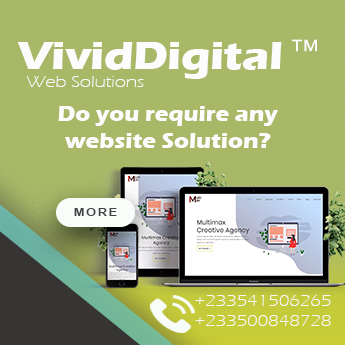 VividDigital- Website Solutions